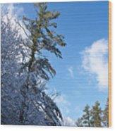 Winter Tree And Sky Wood Print