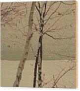 Winter Tree Over Bay Wood Print