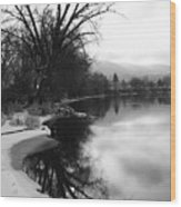 Winter Tree Reflection - Black And White Wood Print