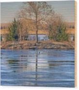 Winter Tree - Walnut Creek Lake Wood Print