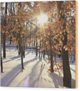 Winter Trees #1 Wood Print