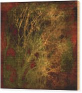 Winter Trees In Gold And Red Wood Print