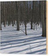 Winter Trees In Snow With Shadow Lines Wood Print