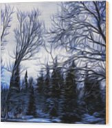 Winter Trees In Sweden Wood Print
