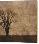 Winter Trees In The Bottomland 1 Wood Print