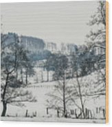 Winter Trees Solitude Landscape Wood Print
