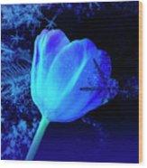 Winter Tulip Blue Theme 2 Wood Print