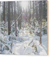 Winter Under The Sun Wood Print