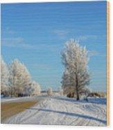 Winter In Saskatchewan Wood Print