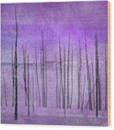 Winter Violet  7913violet Wood Print