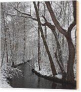 Winter Walk In The Woods Wood Print