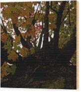 Winter Warning Wood Print