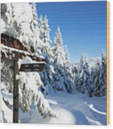 winter way in the Upper Harz Wood Print