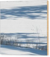 winter weeds SCN M 80 Wood Print