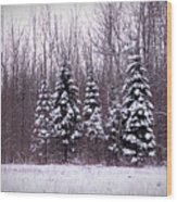 Winter White Magic Wood Print