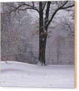 Winter White  Wood Print