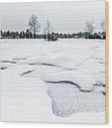 Winter Wonderland Bw Wood Print