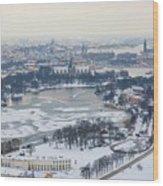 Winter Wonderland In Stockholm Wood Print