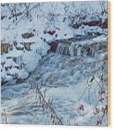 Winter Wonderland Of Minnehaha Falls  Wood Print