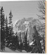 Winter Wonders 3 Wood Print