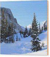 Winter Wonders Wood Print