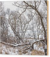 Winter Woods On A Stormy Day 2 Wood Print