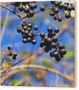 Winterberries II Wood Print