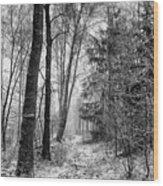Winteress Wood Print