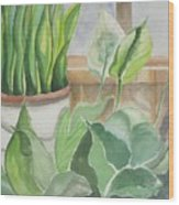 Wintergarten Wood Print