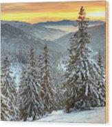 Winterlands Wood Print