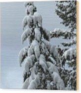 Winter's Burden Wood Print