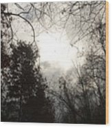 Winter's Coming Wood Print
