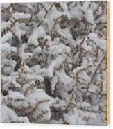 Winter's Contrast Wood Print