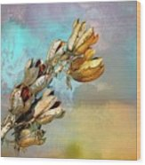 Winters Day Desert Yucca Wood Print