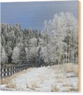 Winters Day In The Mountains Wood Print