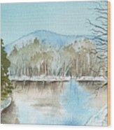 Winter's Daylight Chill  Wood Print