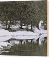 Winter's Edge Wood Print