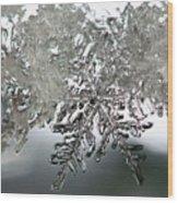 Winter's Glory Wood Print