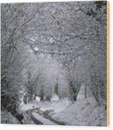 Winters Lane Wood Print
