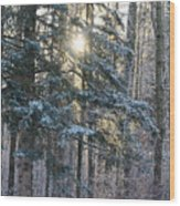 Winter's Midday Light Wood Print