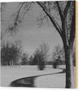 Winter's Path Wood Print