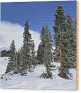Winter's Peace Wood Print