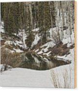 Winters Pond Wood Print