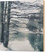 Winter's Reach Wood Print