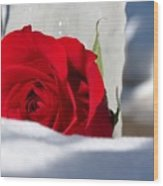 Winters Rose Wood Print