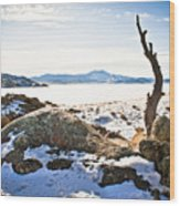 Winter's Silence - Pathfinder Reservoir - Wyoming Wood Print