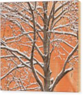 Winter's Touch Wood Print by Carl Amoth