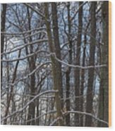Winter's Touch Wood Print