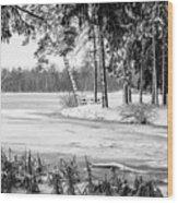 Winter's Tropical Landscape Wood Print