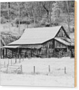 Winter's White Shroud Wood Print by Tom Mc Nemar